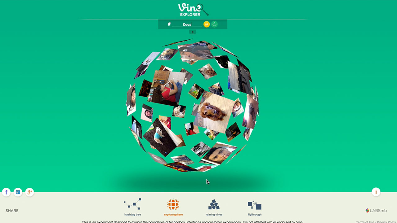 VineExplorer3